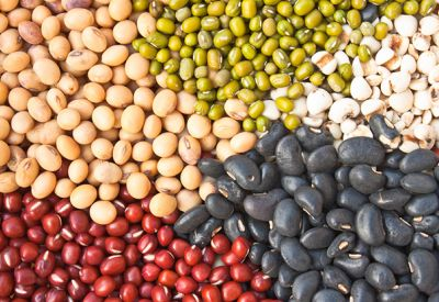 noten bonen zaden